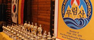 Bericht Header TKD - SSC Kaempfer dominieren Nordic Open