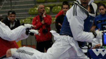 Permalink auf:Taekwondo