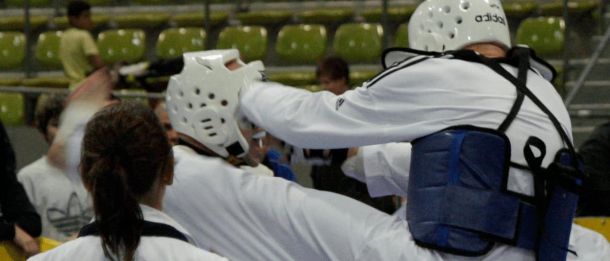 Header Taekwondo Team