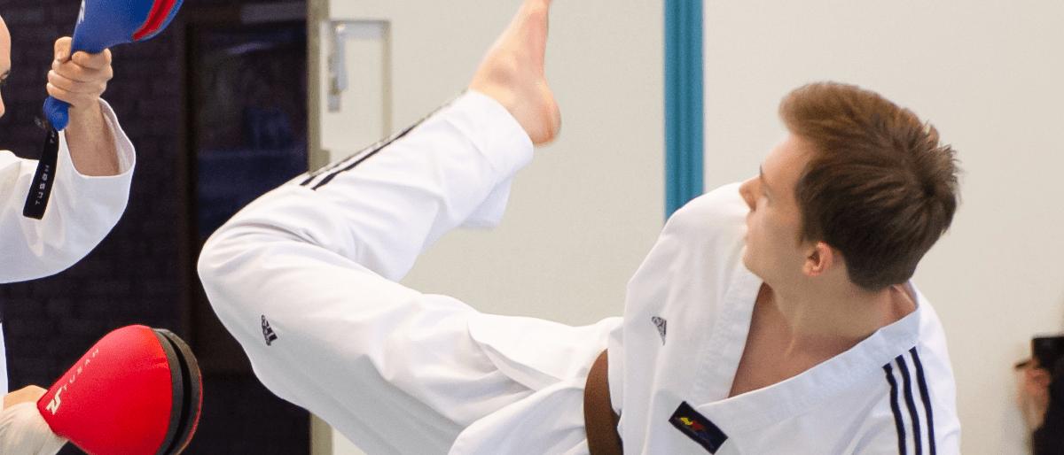 Header Taekwondo - Tobias Schneider