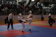 11. Internationale Berlin Open (2013)