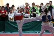 20100327-offene-landesmeisterschaft-tusa-k215-021